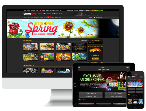 Bonus casino netbet macho sports - 389630